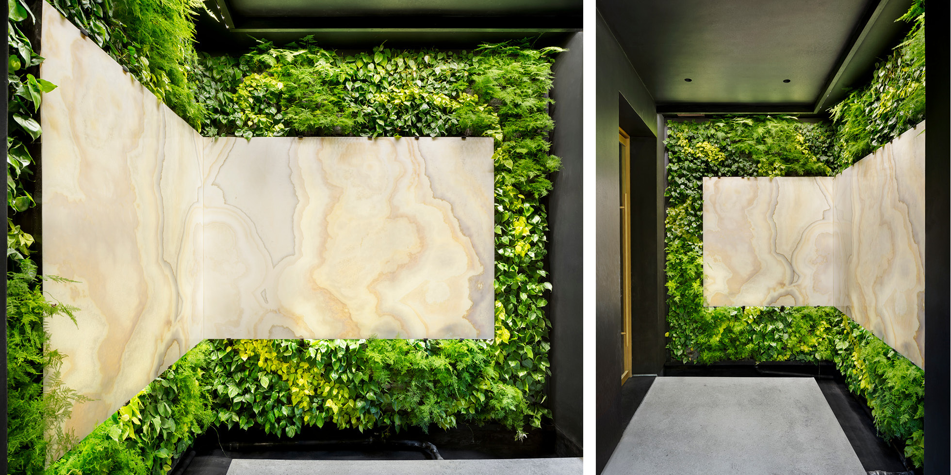 Los Angeles Residence Living Wall by Habitat Horticulture - View 3