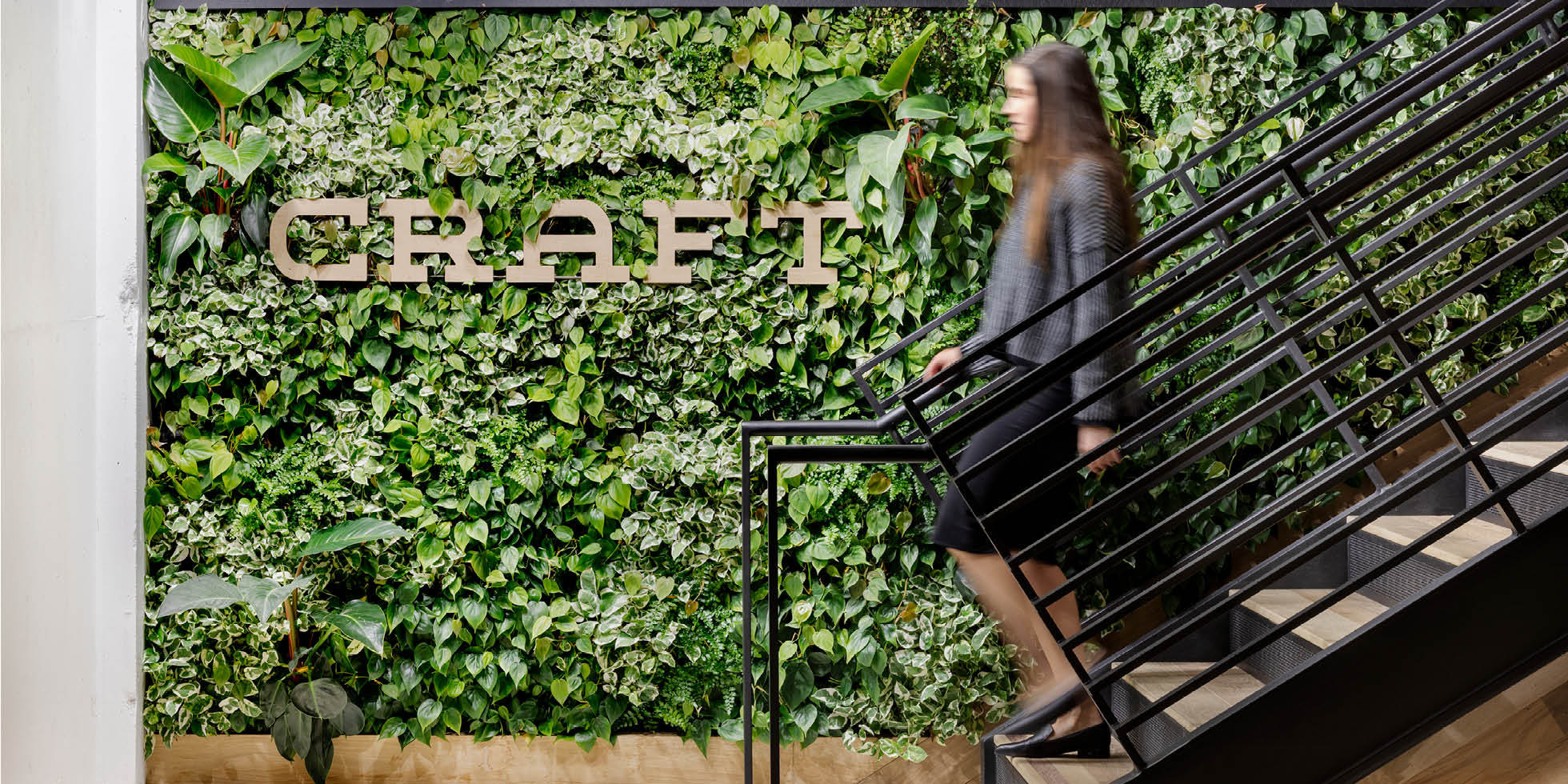 Craft Ventures Living Wall by Habitat Horticulture - View 2