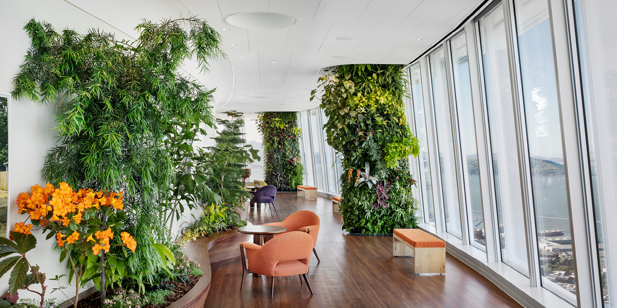 Salesforce Tower  Living Wall by Habitat Horticulture - View 6