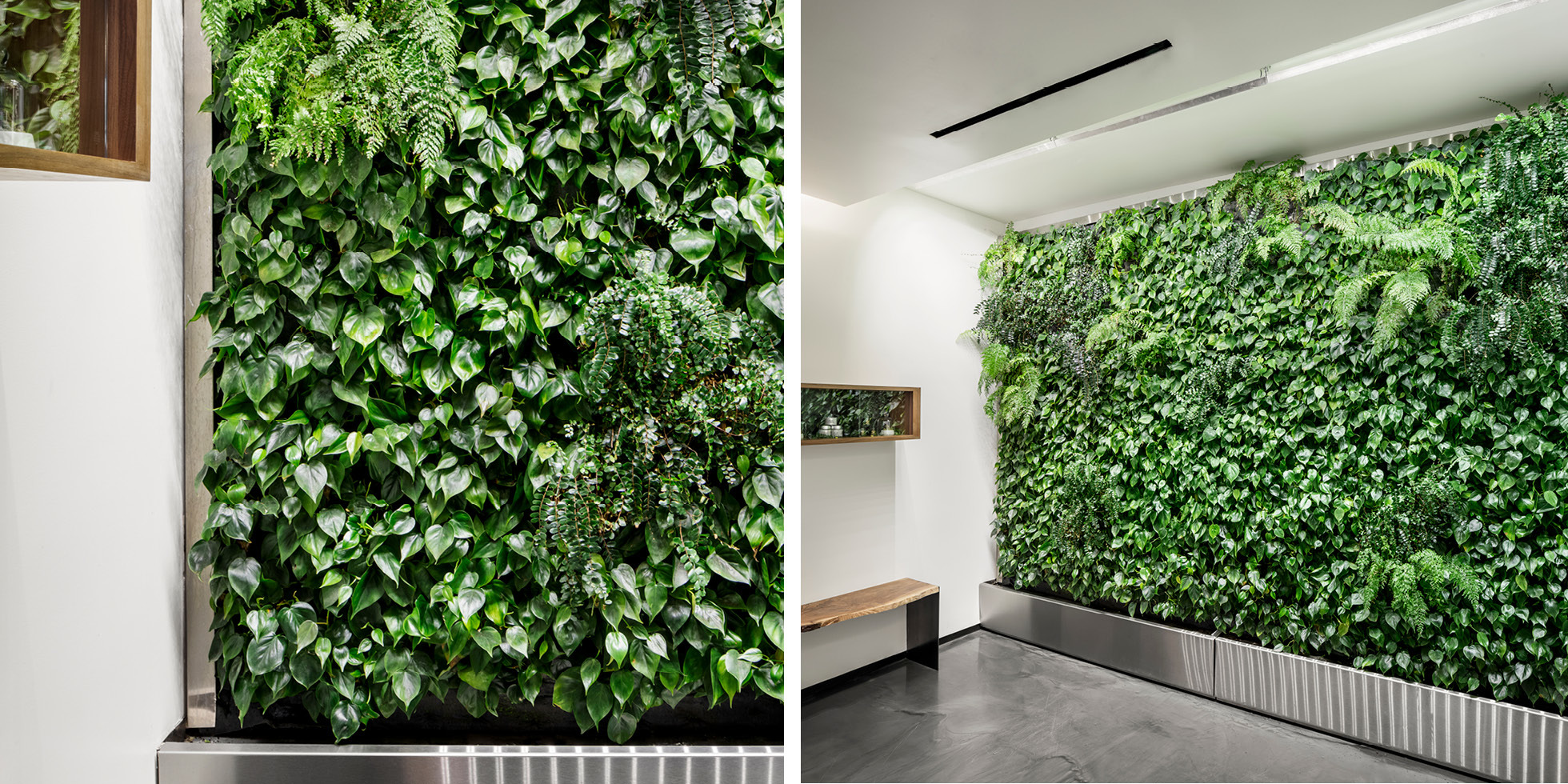 Garden of Eden  Living Wall by Habitat Horticulture - View 3