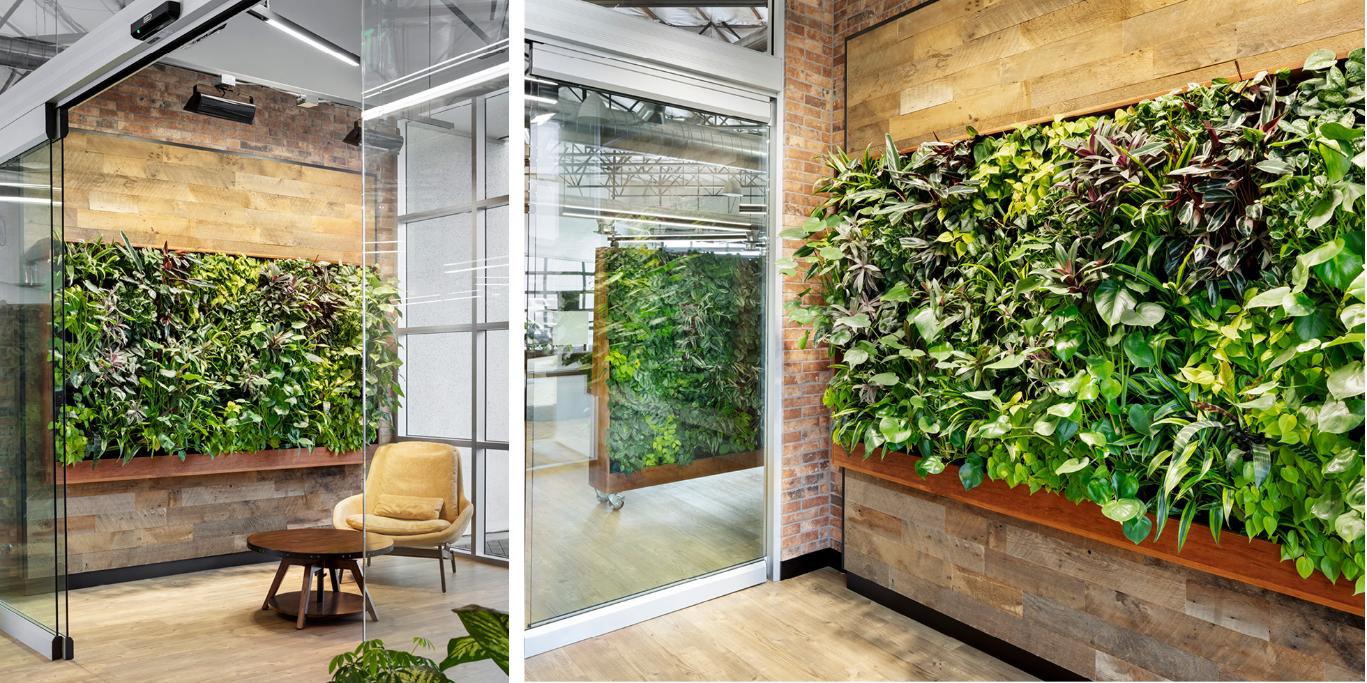 Smiths Group Service Corp Living Wall by Habitat Horticulture - View 5