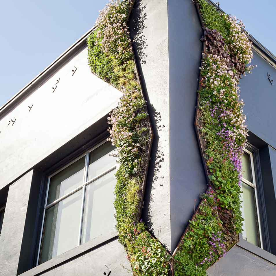 Cedar Alley Living Wall by Habitat Horticulture - View 3