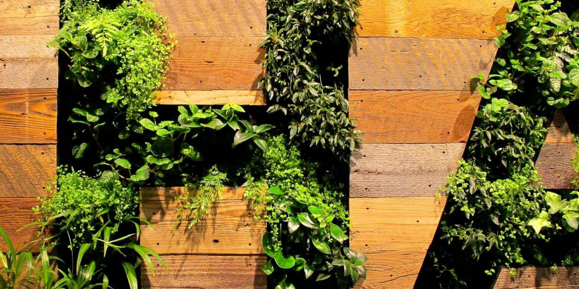 Facebook Living Wall by Habitat Horticulture - View 2