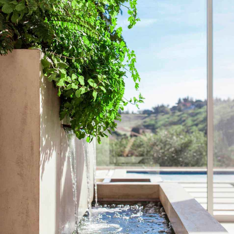 Liddicoat Residence Living Wall by Habitat Horticulture - View 1
