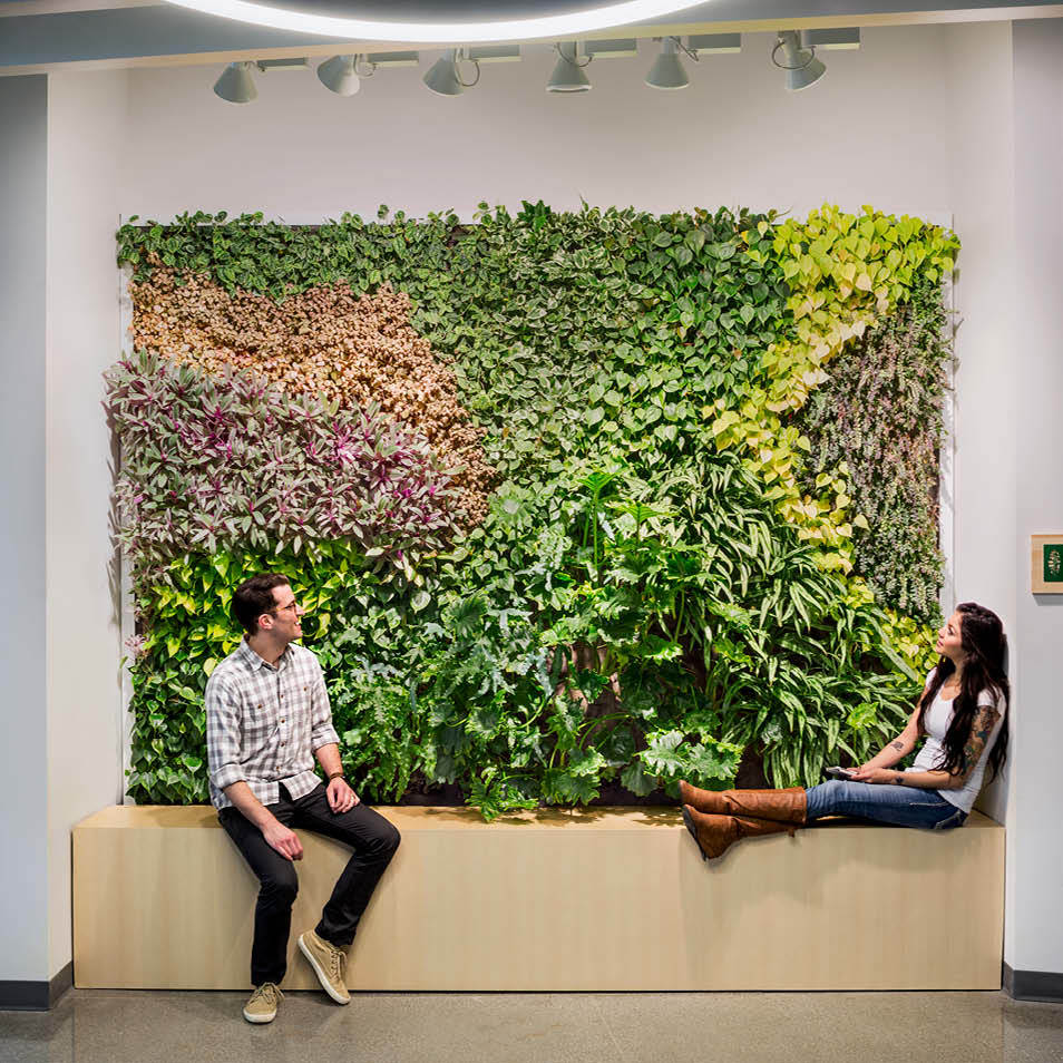 Jabil Living Wall by Habitat Horticulture - View 3