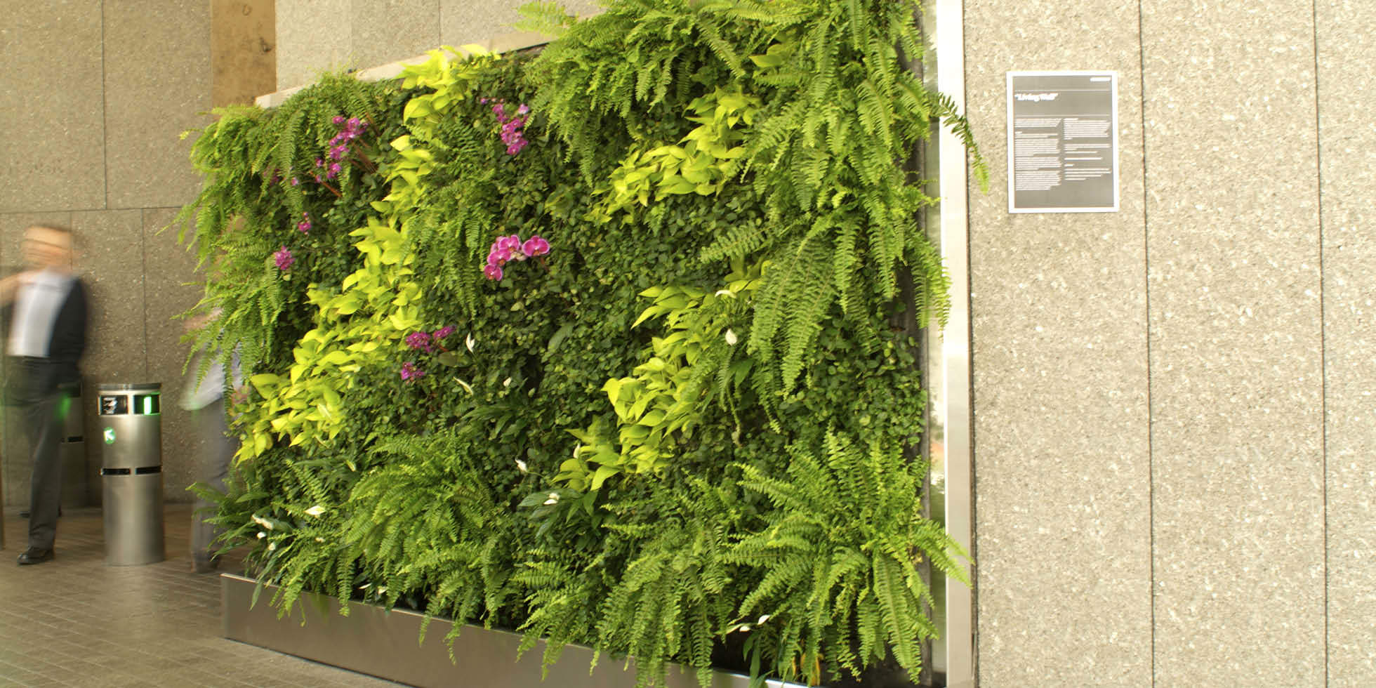 Mckesson Corporation  Living Wall by Habitat Horticulture - View 1