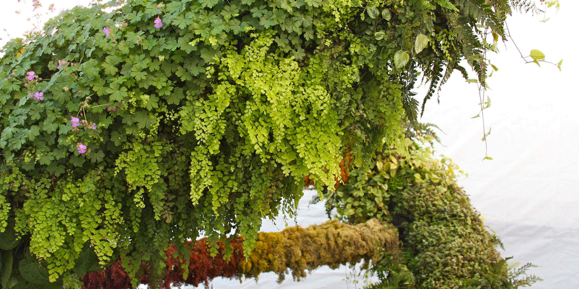 Living Double Helix Living Wall by Habitat Horticulture - View 1