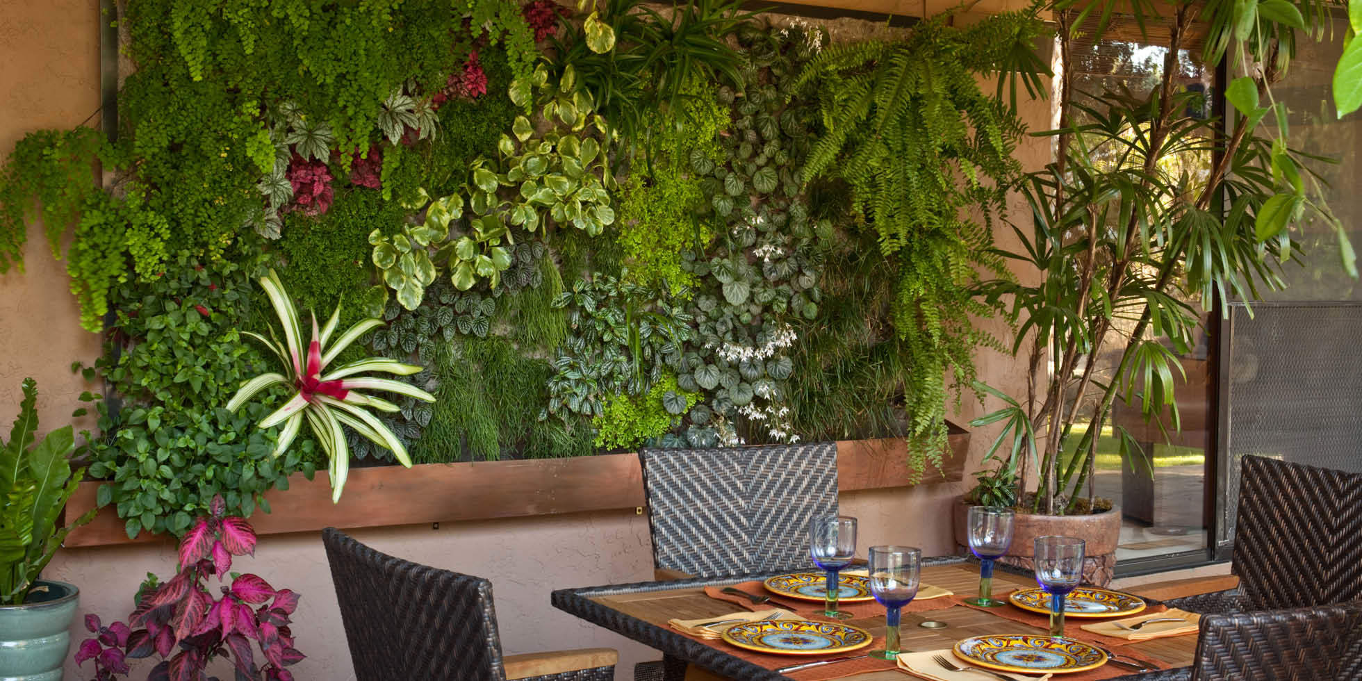 Willow Glen Patio Living Wall by Habitat Horticulture - View 1