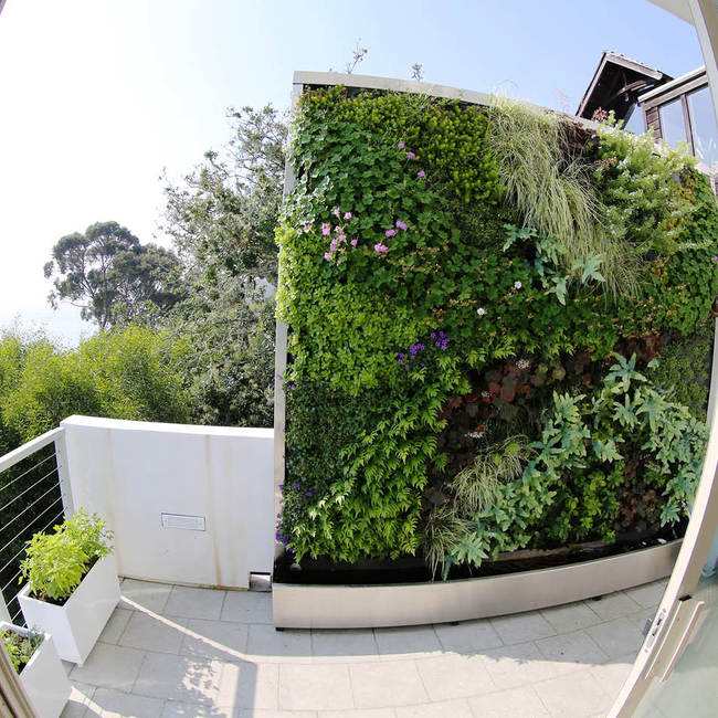 Living wall green wall vertical garden12