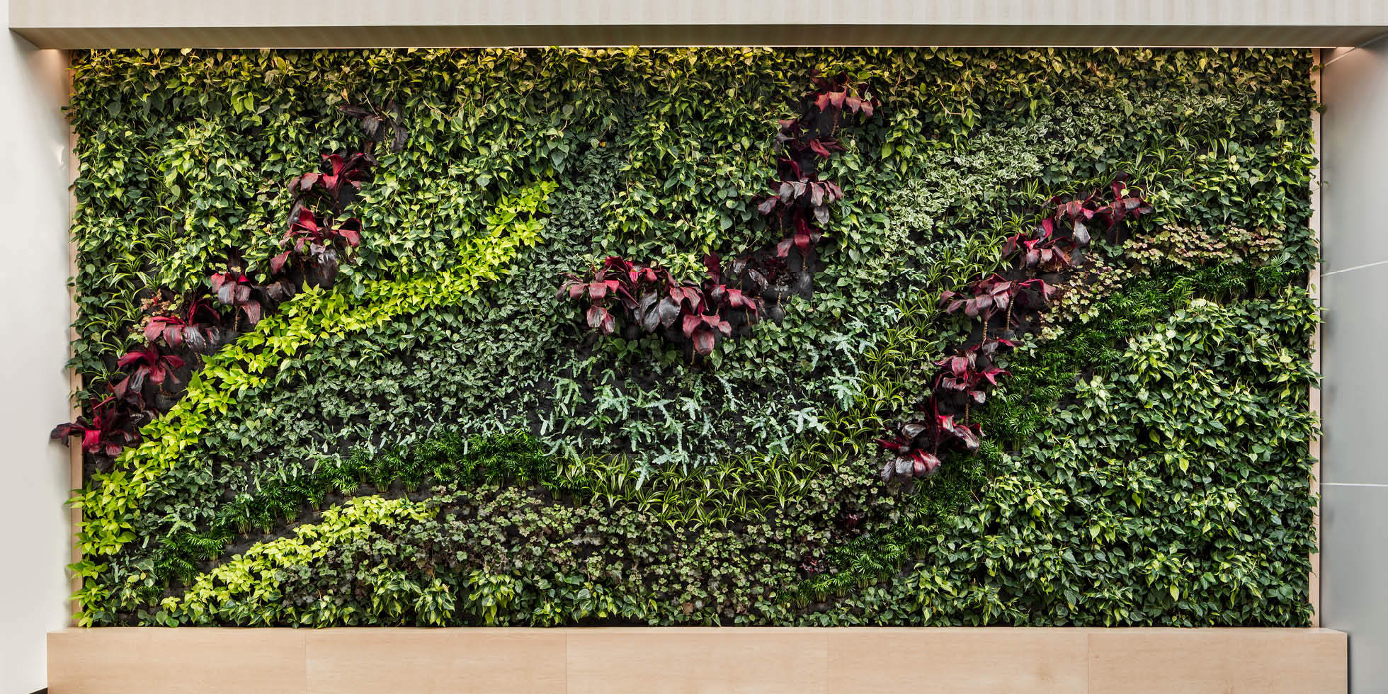 BD Biosciences Living Wall by Habitat Horticulture - View 2