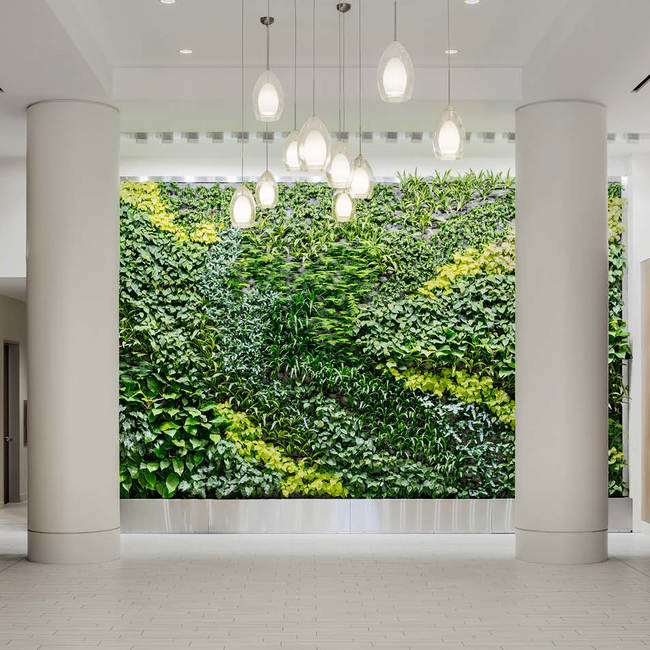 Epa living wall green wall2