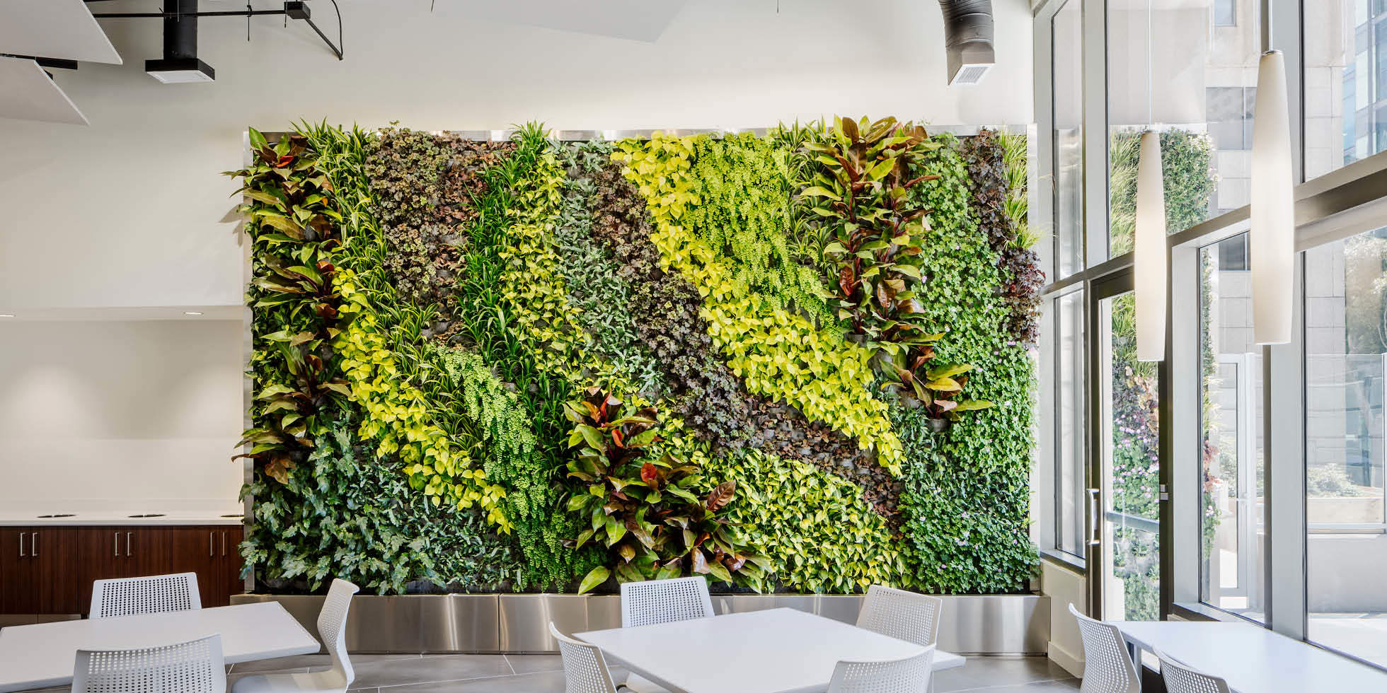 U.S. EPA  Living Wall by Habitat Horticulture - View 4