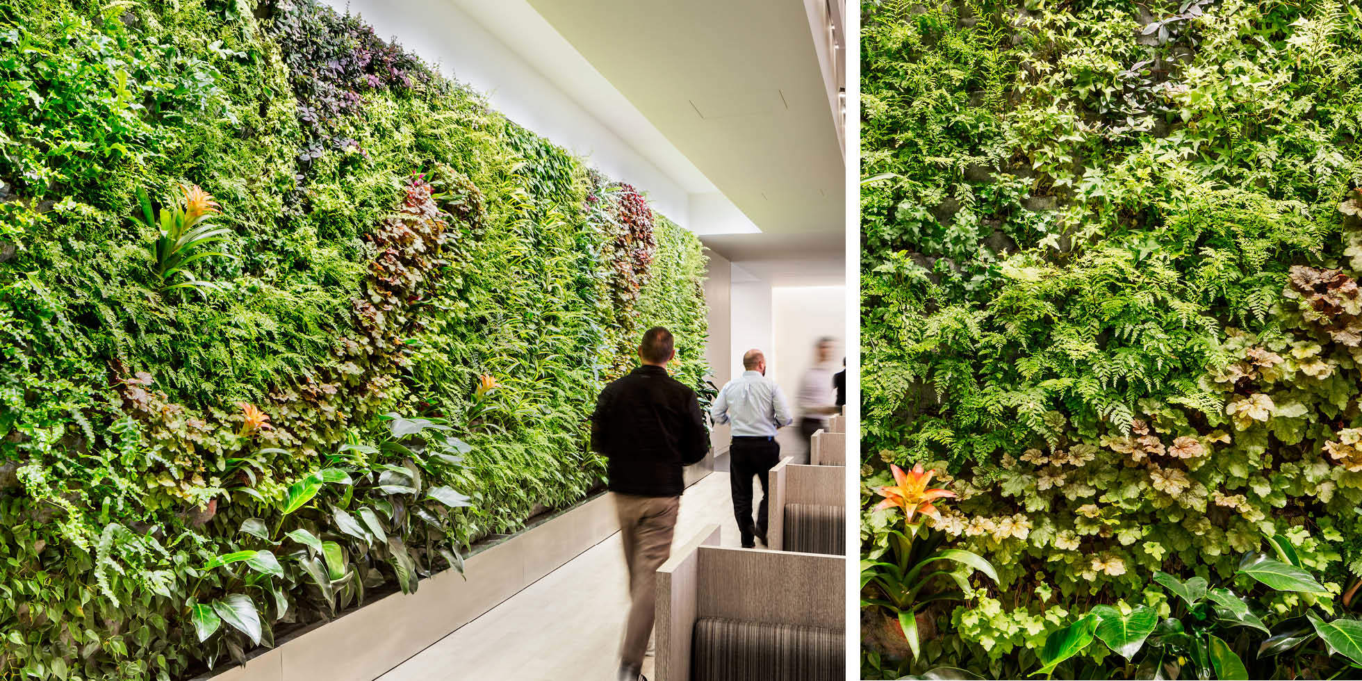 One Market Food Court Living Wall by Habitat Horticulture - View 2