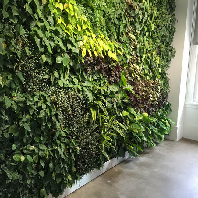 Mosaic living wall2