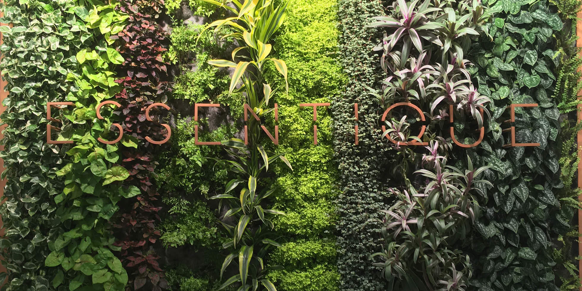 Essentique Living Wall by Habitat Horticulture - View 2