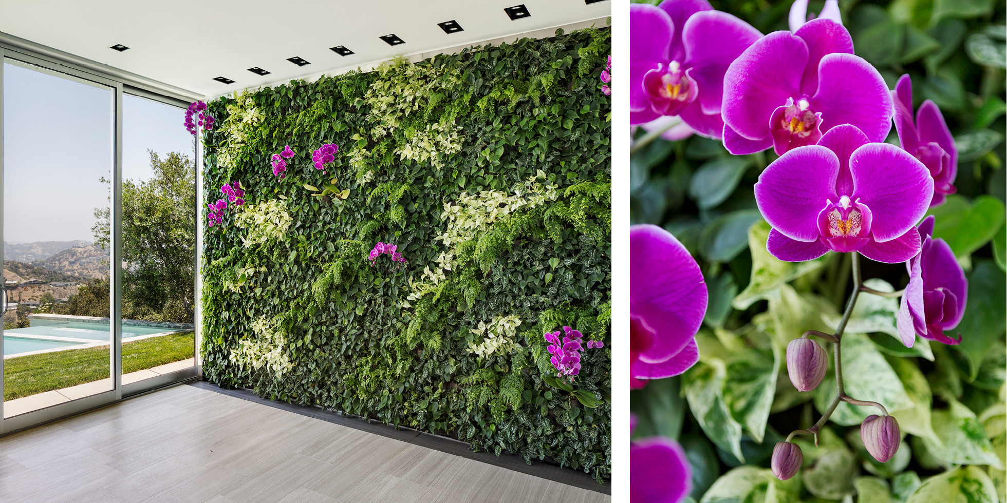 Skyline Residence Living Wall by Habitat Horticulture - View 2