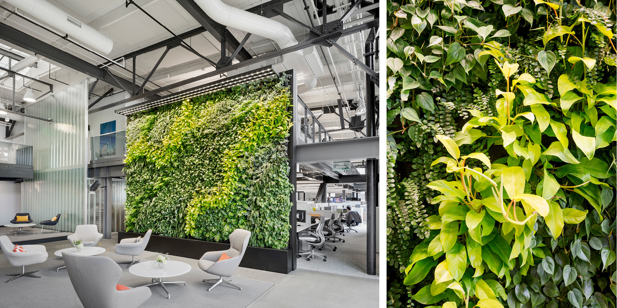Prologis Living Wall by Habitat Horticulture - View 2