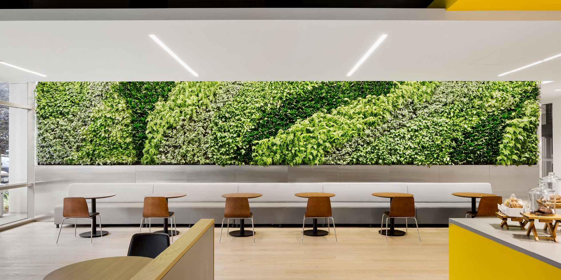 Palo Alto Networks Living Wall by Habitat Horticulture - View 1