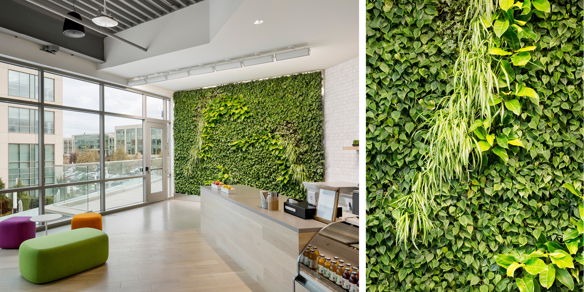 Palo Alto Networks Living Wall by Habitat Horticulture - View 3