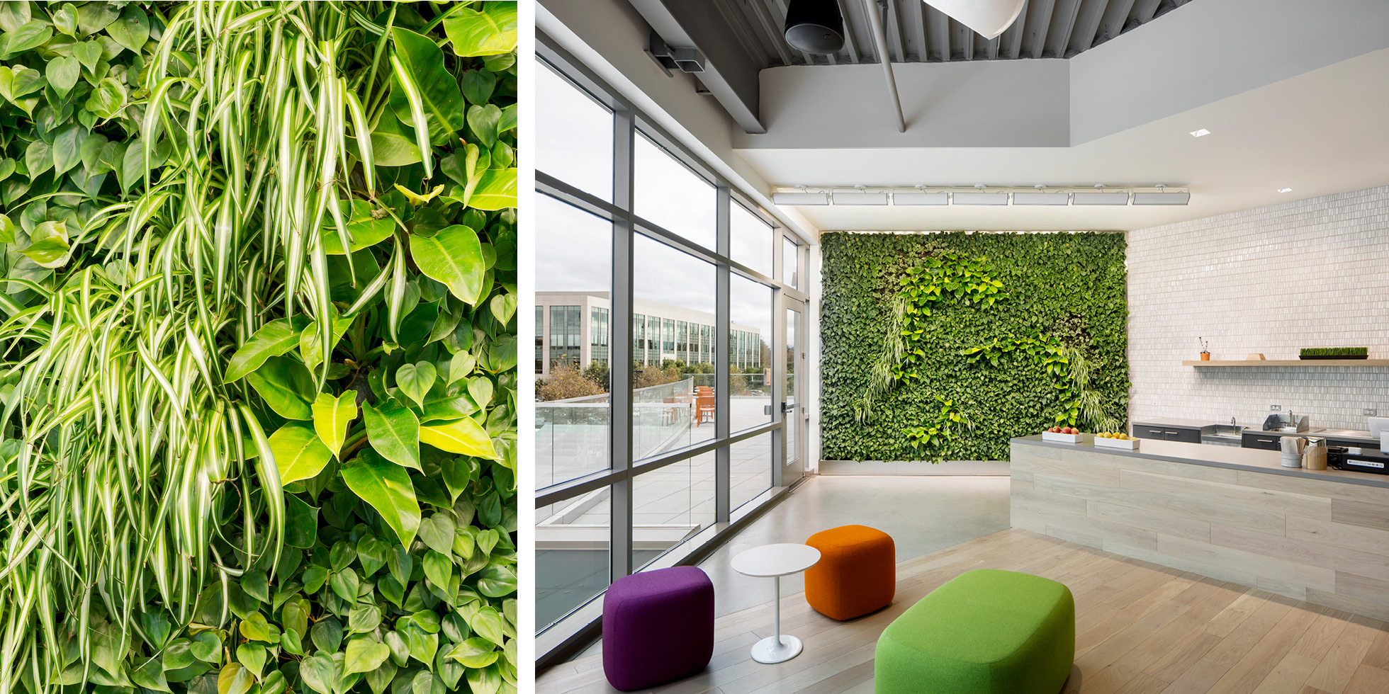 Palo Alto Networks Living Wall by Habitat Horticulture - View 4