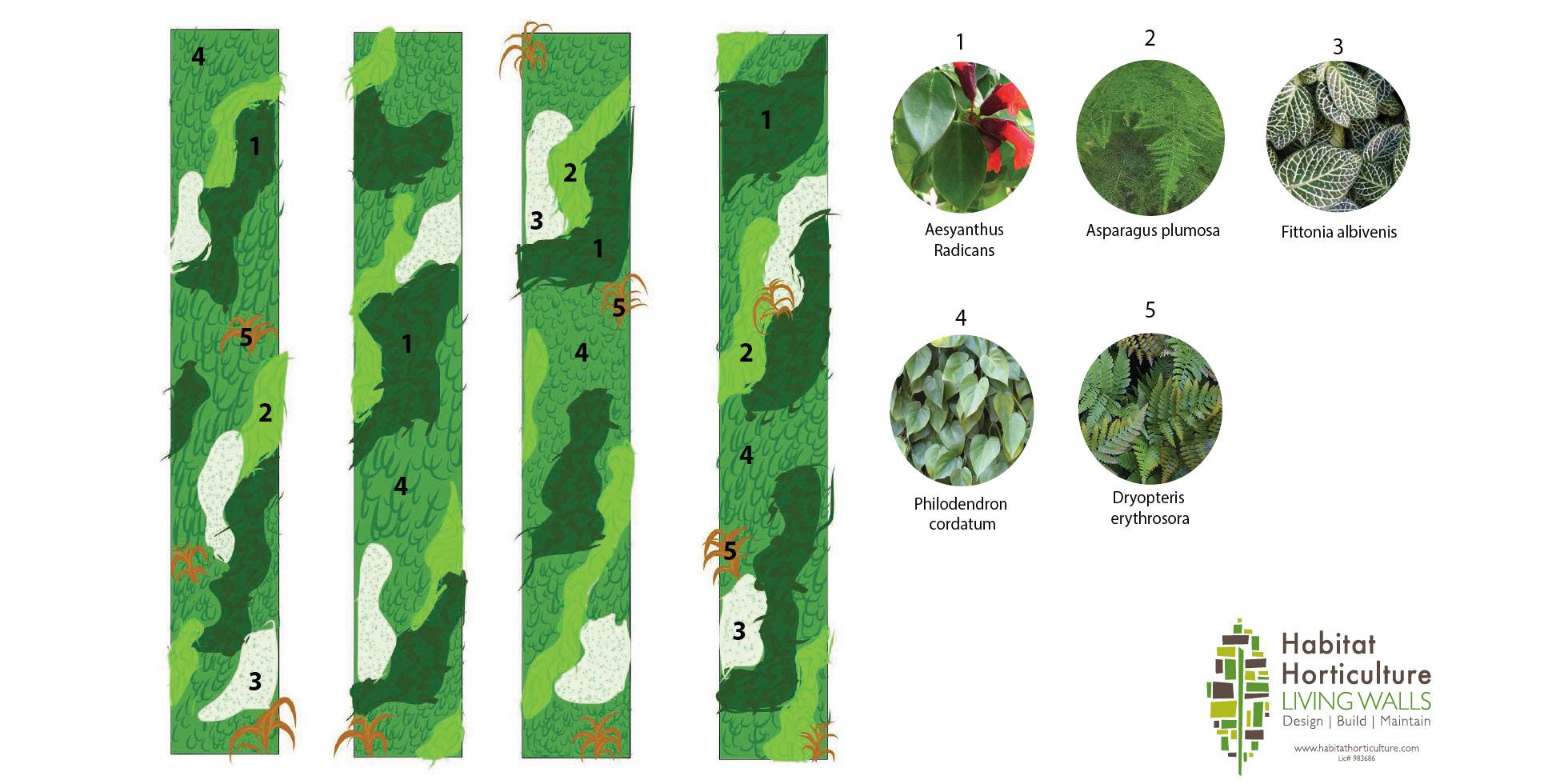 Encasa  Living Wall by Habitat Horticulture - View 2