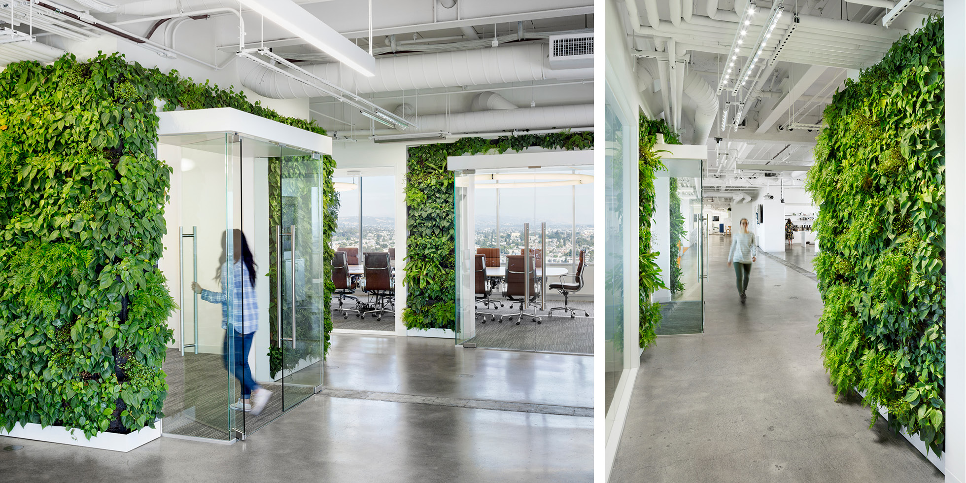 Solar Mosaic Living Wall by Habitat Horticulture - View 6