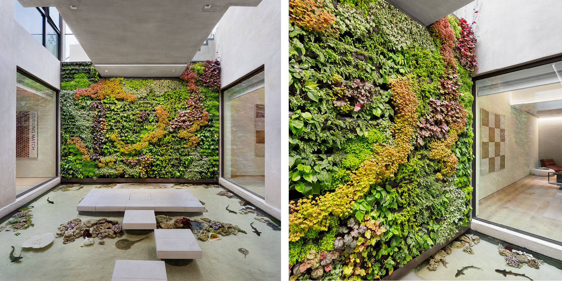 Beverly Hills Residence Living Wall by Habitat Horticulture - View 1