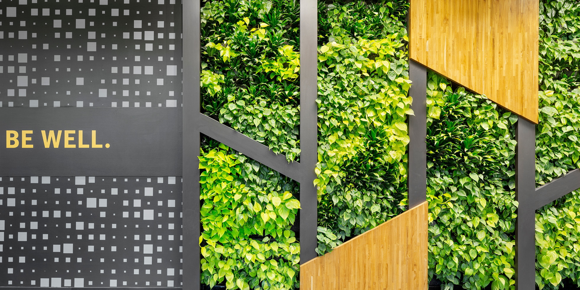 Symantec Living Wall by Habitat Horticulture - View 5