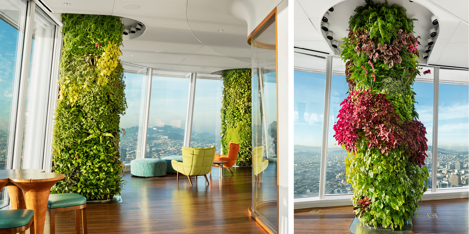 Salesforce Tower  Living Wall by Habitat Horticulture - View 8