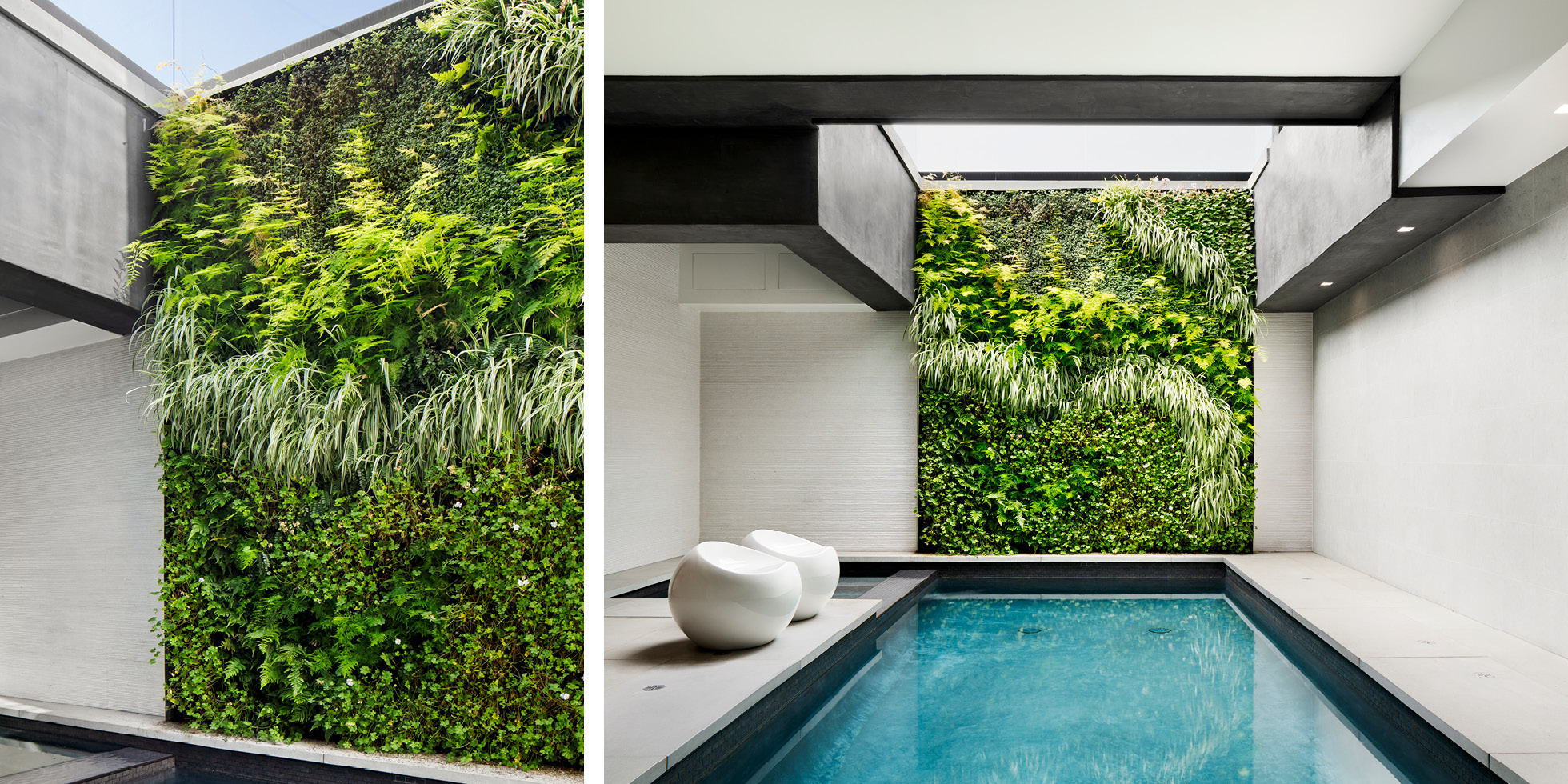 Hollywood Hills Poolside Retreat Living Wall by Habitat Horticulture - View 3