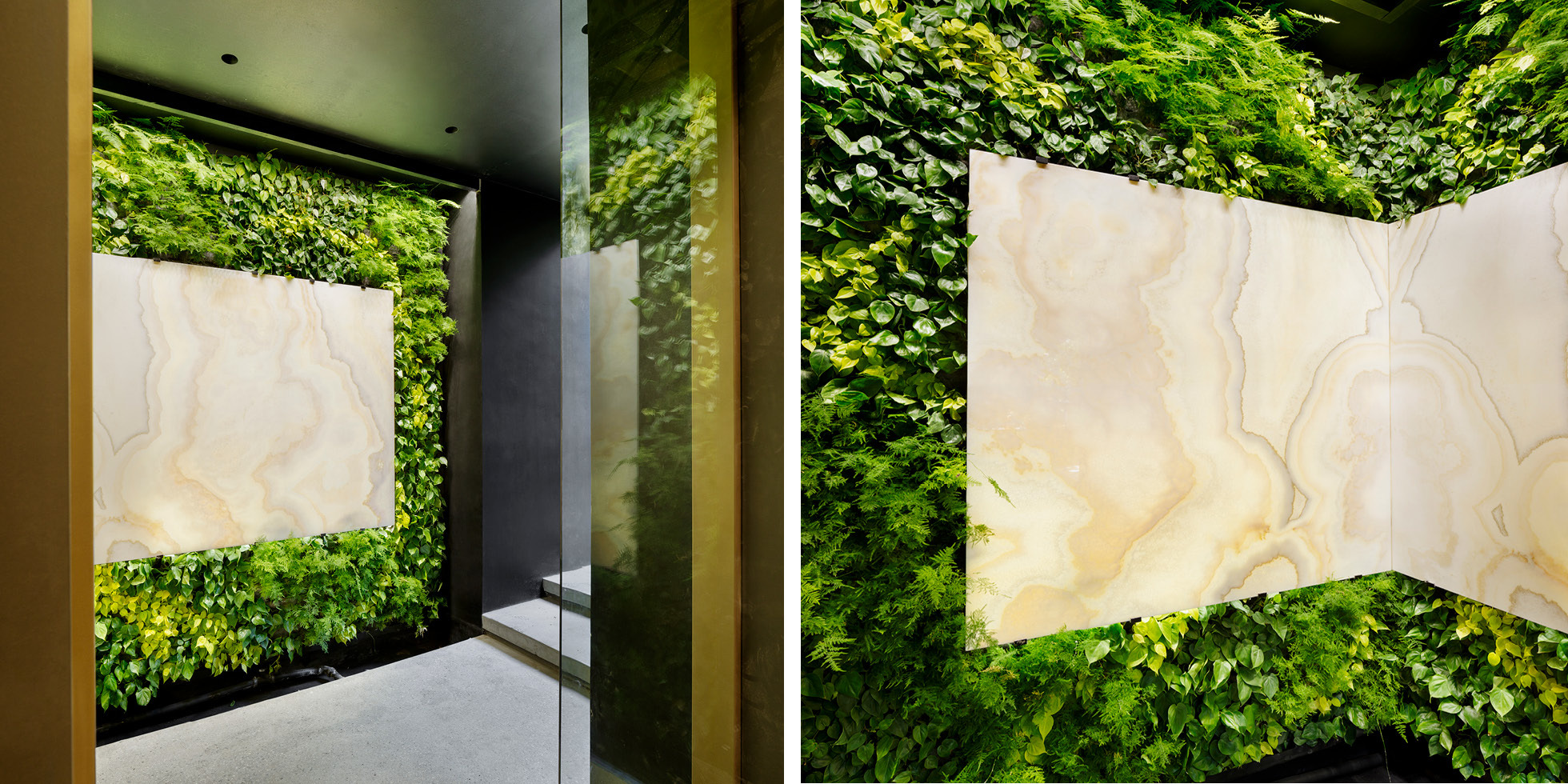 Los Angeles Residence Living Wall by Habitat Horticulture - View 4