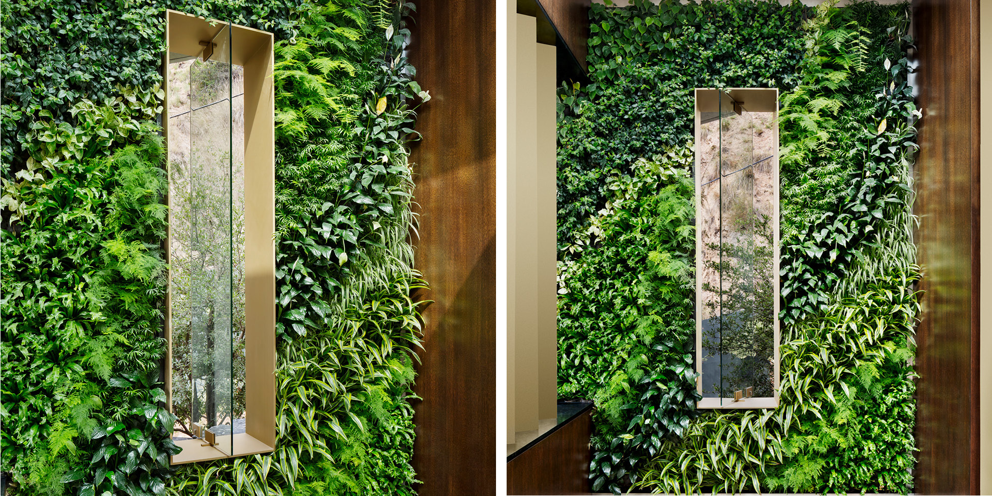 Los Angeles Residence Living Wall by Habitat Horticulture - View 2