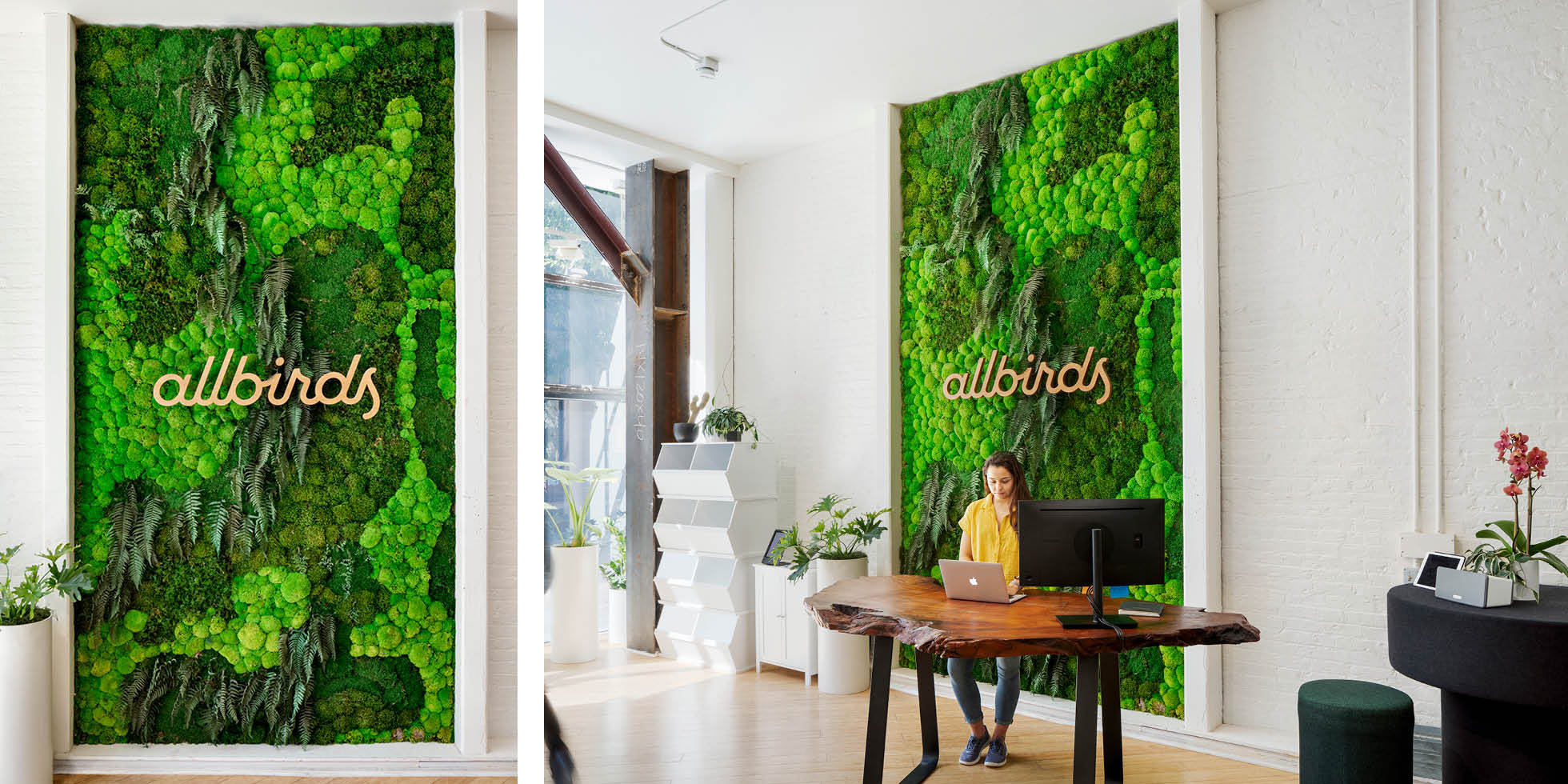 Allbirds Living Wall by Habitat Horticulture - View 1