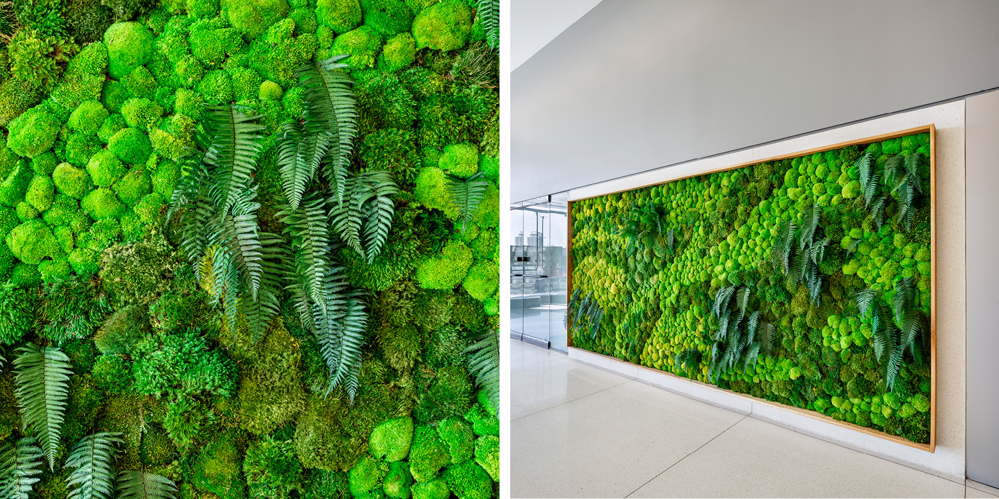 Harvest Properties Living Wall by Habitat Horticulture - View 3
