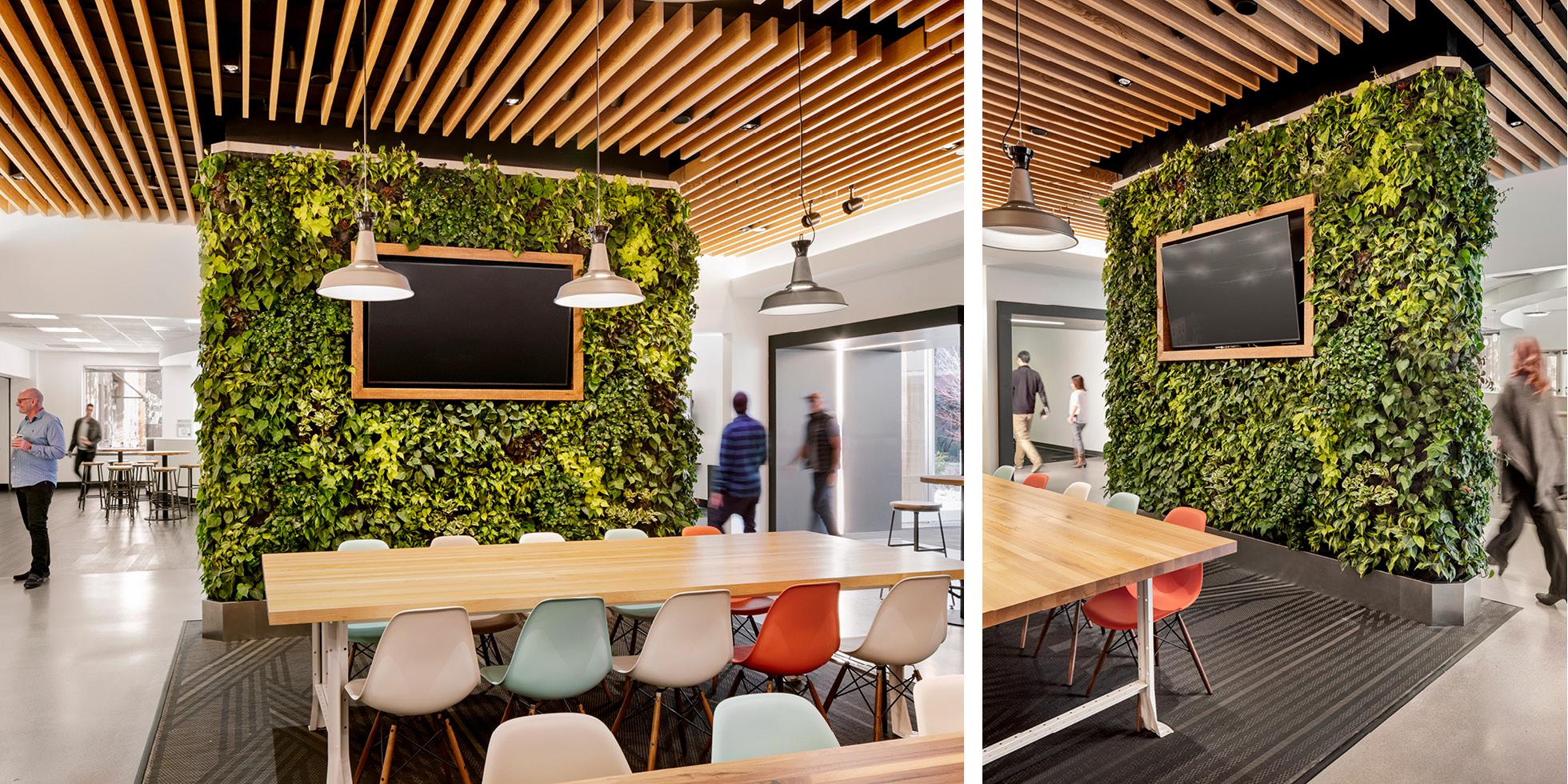 Plantronics Cafe Living Wall by Habitat Horticulture - View 3