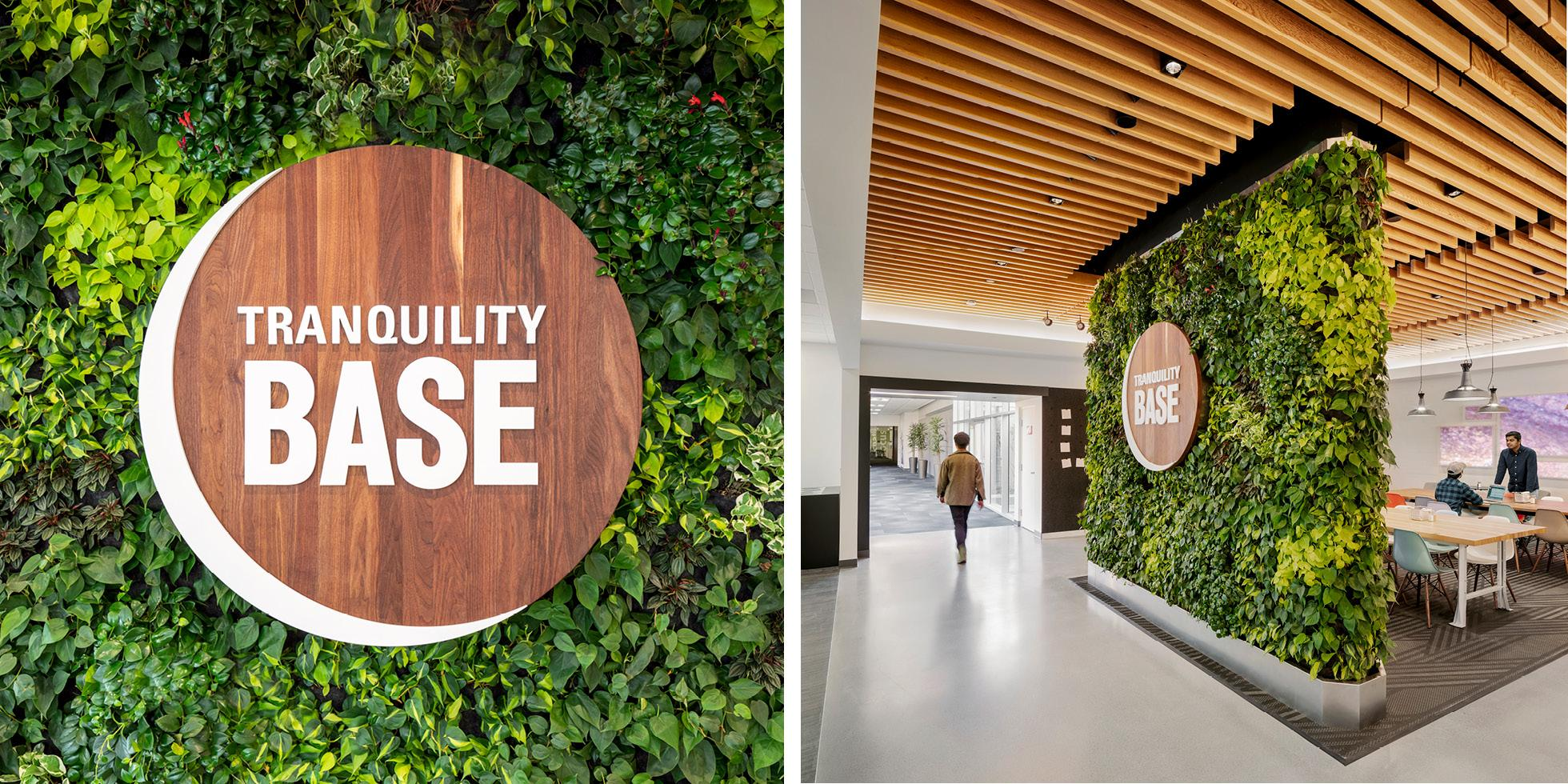 Plantronics Cafe Living Wall by Habitat Horticulture - View 1
