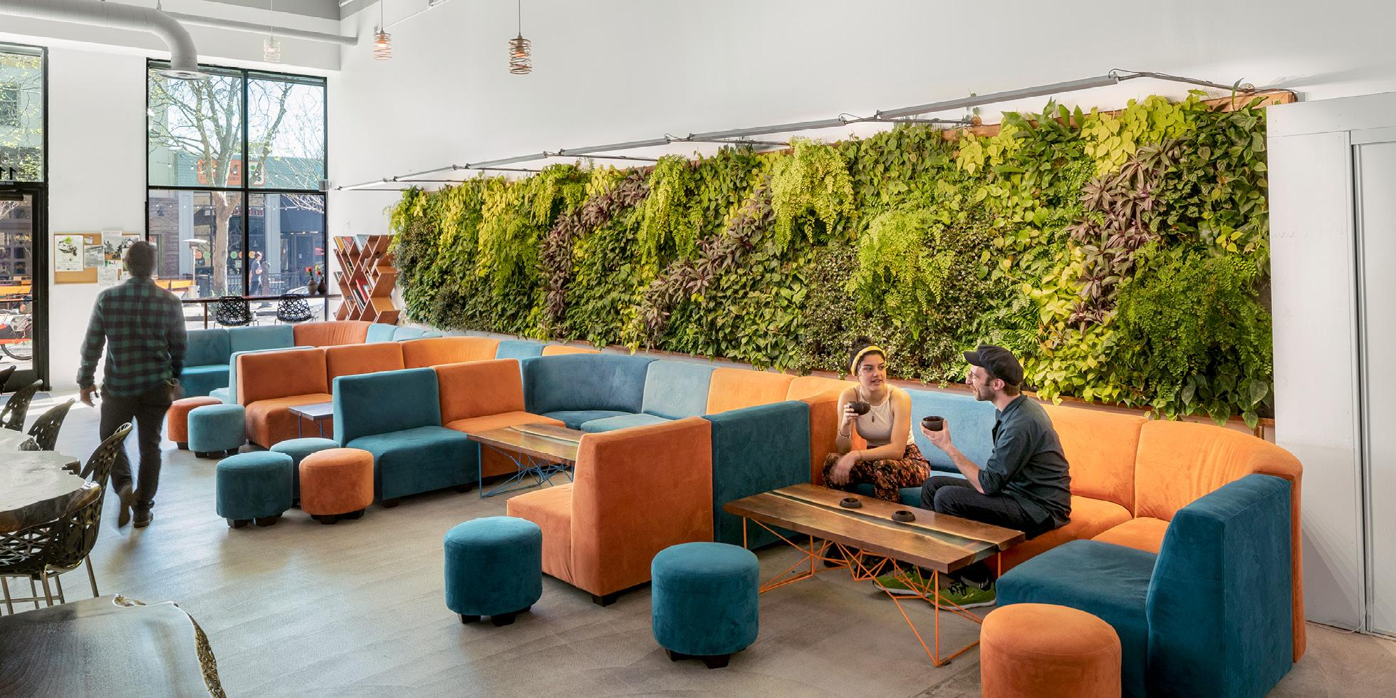 MeloMelo Kava Bar Living Wall by Habitat Horticulture - View 3
