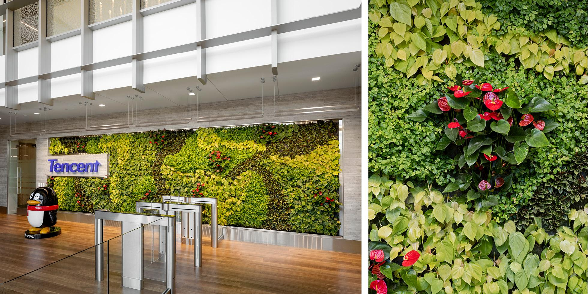 Tencent America Living Wall by Habitat Horticulture - View 2