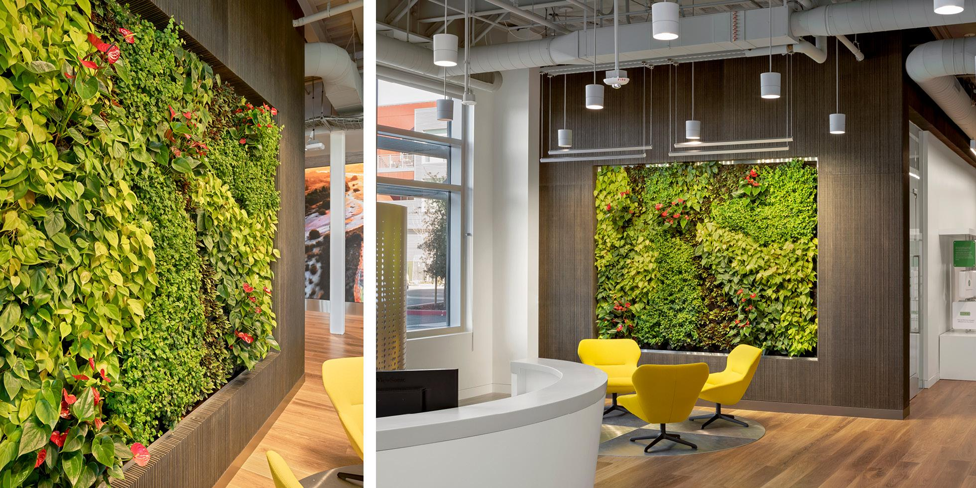 Tencent America Living Wall by Habitat Horticulture - View 3