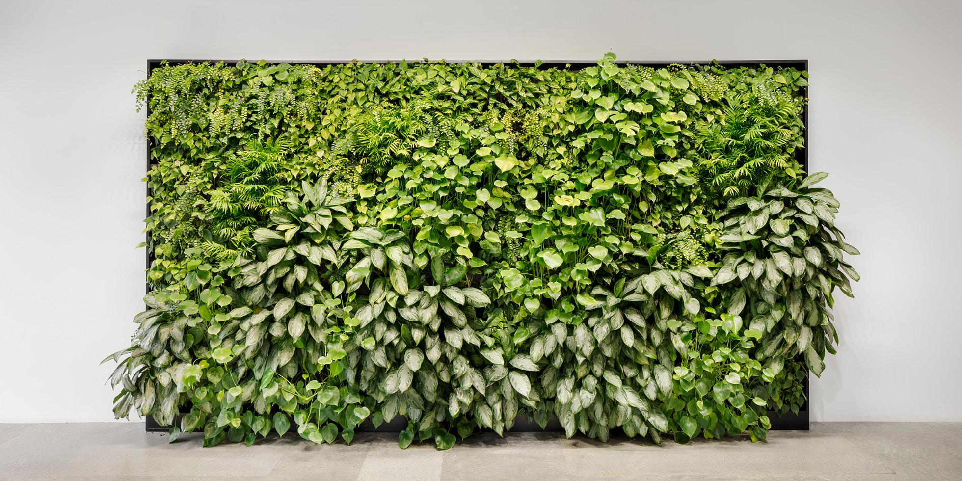 Zoox Living Wall by Habitat Horticulture - View 4