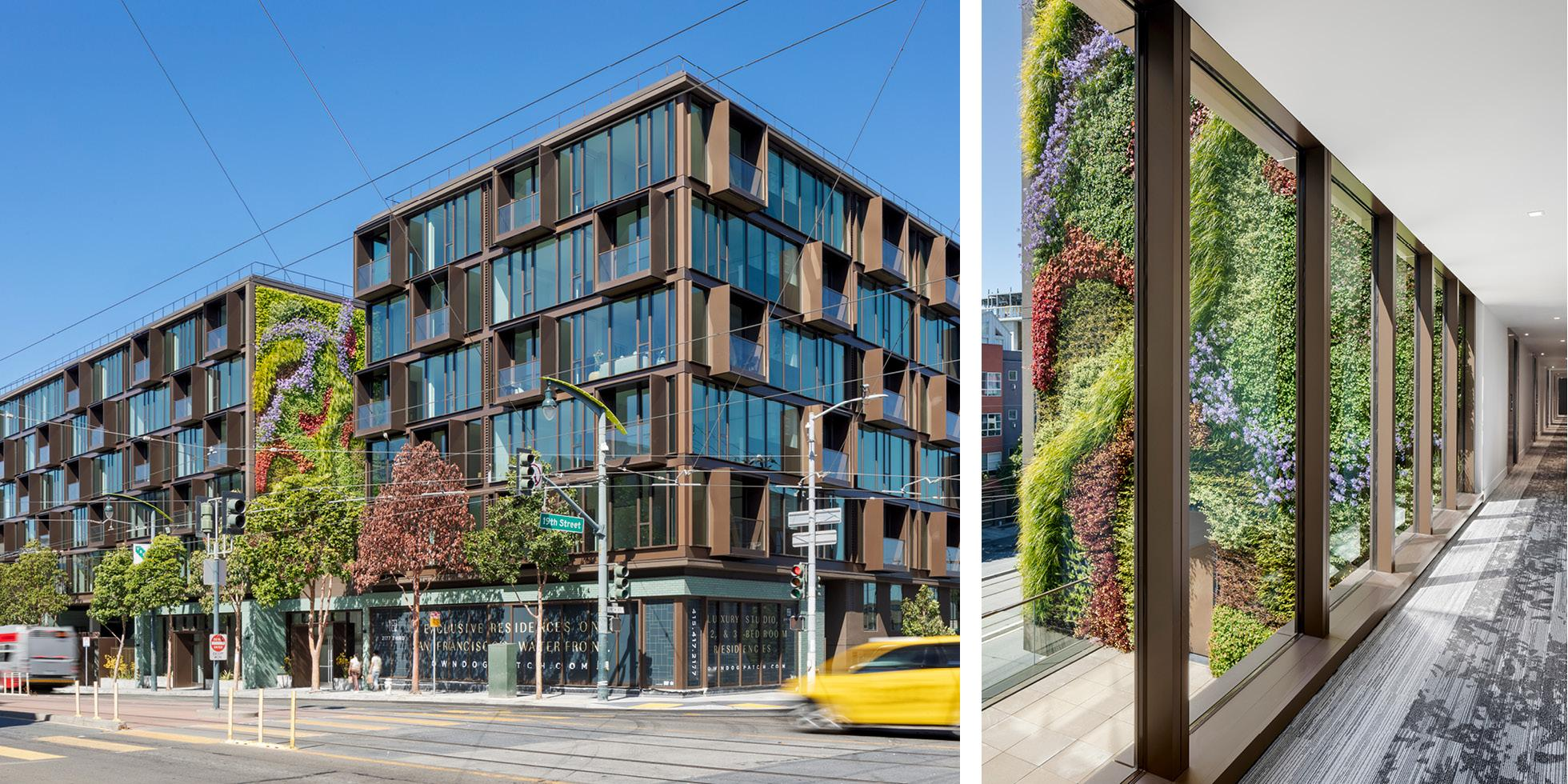 2177 3rd. St.  Living Wall by Habitat Horticulture - View 1