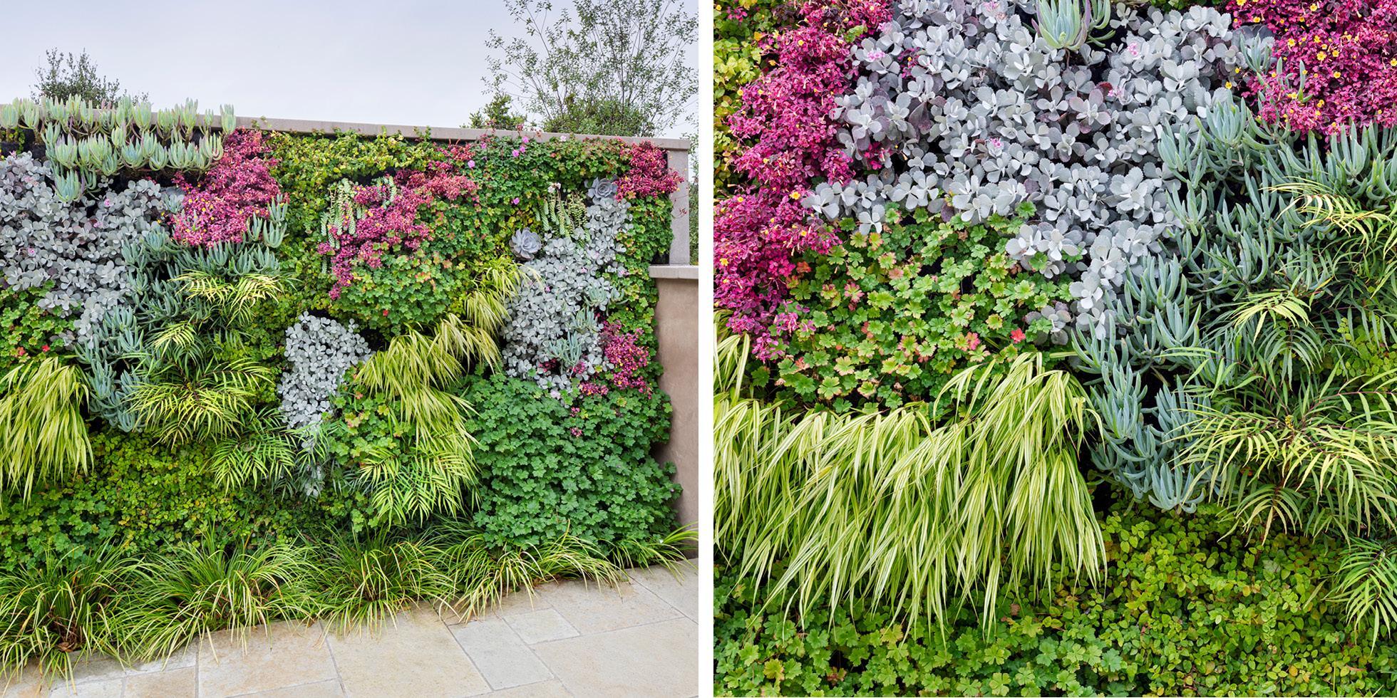 La Senda Road Living Wall by Habitat Horticulture - View 2